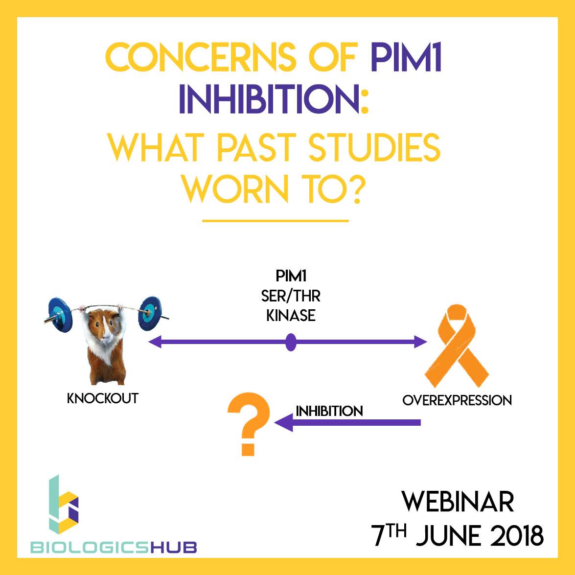 Webinar: Concerns Of PIM1 Inhibition: What Do Past Studies Worn To?